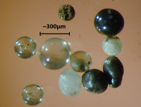 light_microscope_images_of_stony_cosmic_spherules-800x610